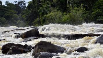 Awarradam in Suriname