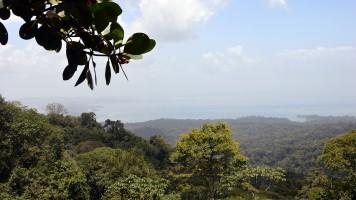 Brownsberg en Boven Suriname