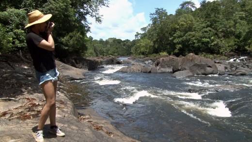 Blanche Marievallen in Suriname