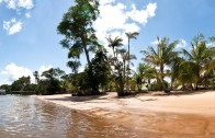 White Beach & Overbridge in Suriname