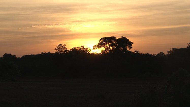 Suriname Hollidays