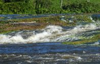 Stichting Toerisme Suriname