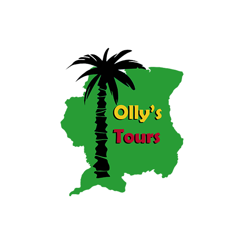 Olly's Tours